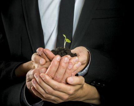 Capacitación, diseño  y estructuración de Proyectos de Inversión  y de Cooperación Internacional.